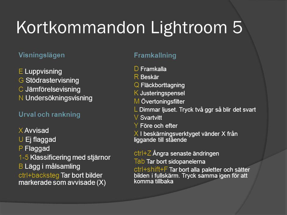 Kortkommandon Lightroom 5 Visningslägen E Luppvisning G Stödrastervisning C Jämförelsevisning N Undersökningsvisning Urval och rankning X Avvisad U Ej