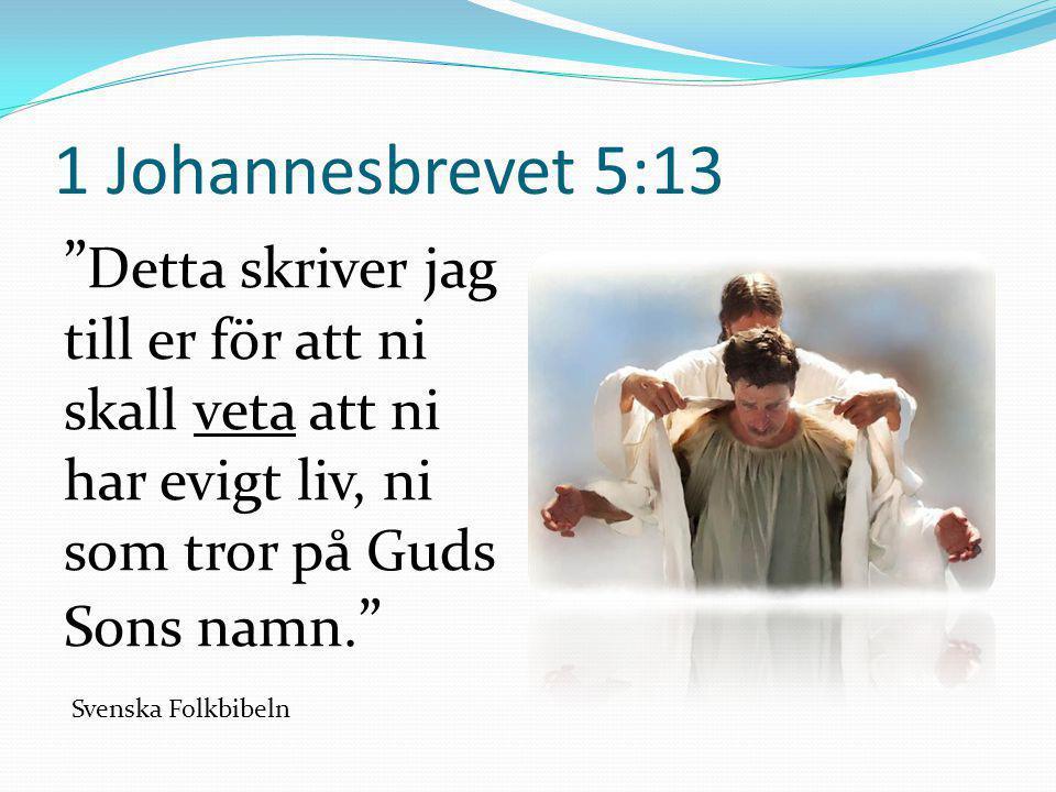 """1 Johannesbrevet 5:13 """" Detta skriver jag till er för att ni skall veta att ni har evigt liv, ni som tror på Guds Sons namn. """" Svenska Folkbibeln"""