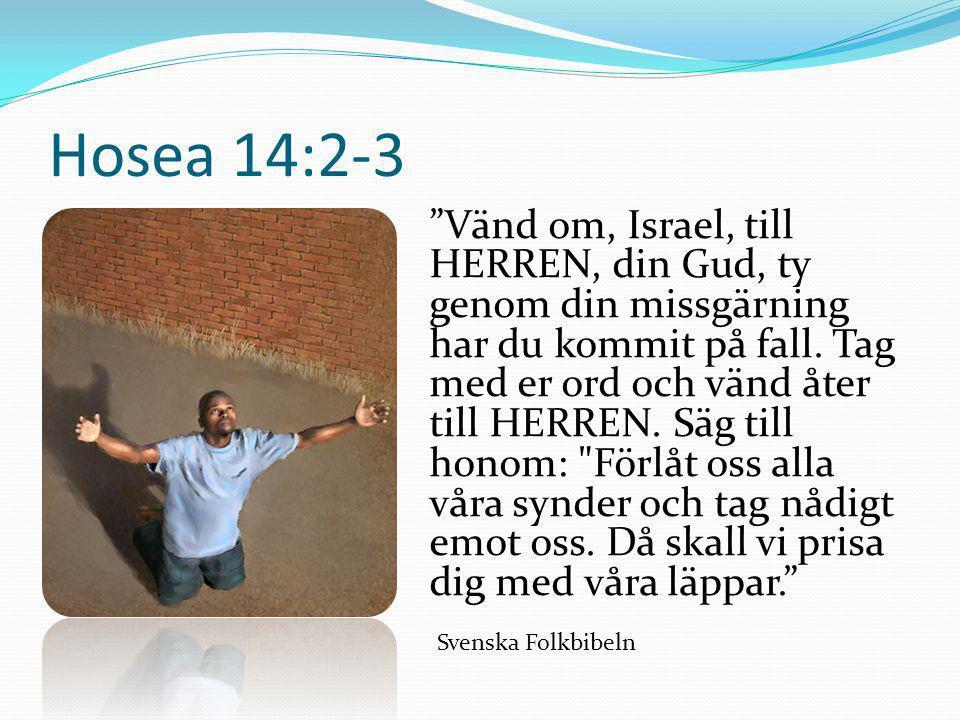 """Hosea 14:2-3 """"Vänd om, Israel, till HERREN, din Gud, ty genom din missgärning har du kommit på fall. Tag med er ord och vänd åter till HERREN. Säg til"""