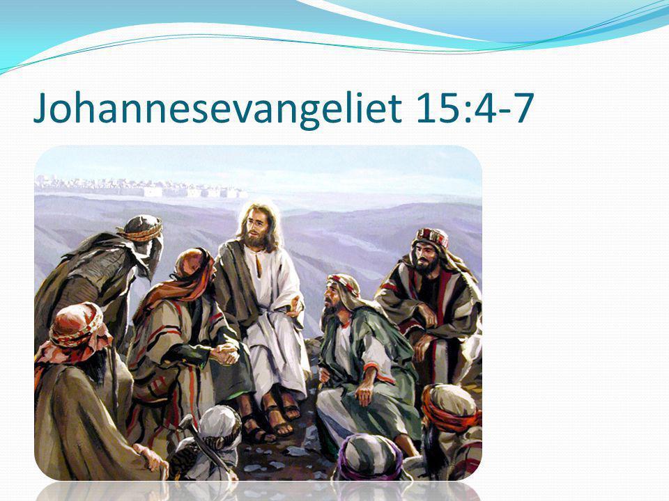 Johannesevangeliet 15:4-7