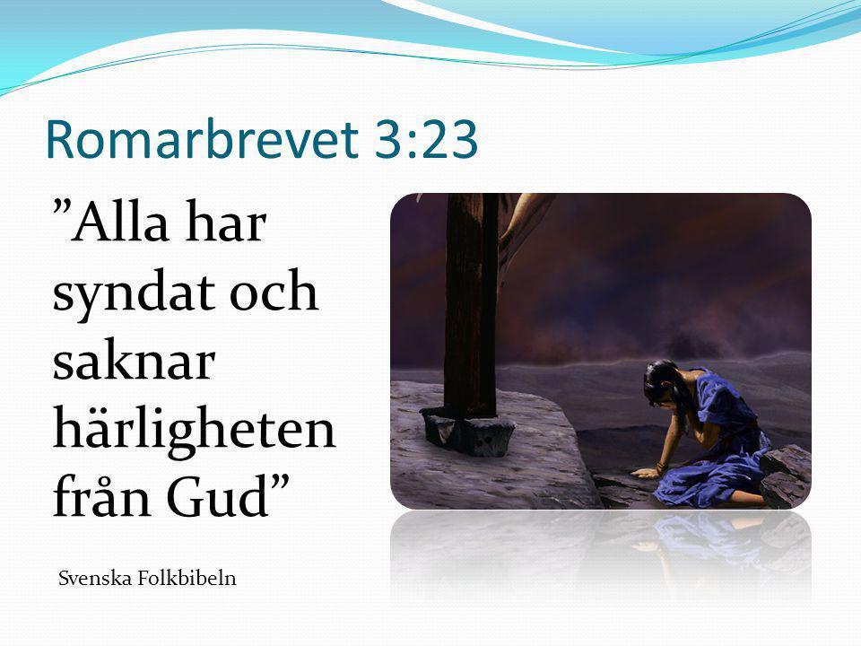 """Romarbrevet 3:23 """"Alla har syndat och saknar härligheten från Gud"""" Svenska Folkbibeln"""