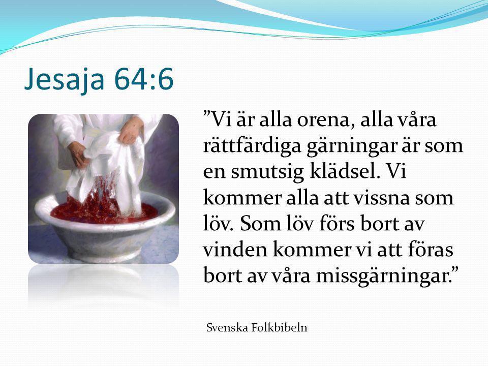 """Jesaja 64:6 """"Vi är alla orena, alla våra rättfärdiga gärningar är som en smutsig klädsel. Vi kommer alla att vissna som löv. Som löv förs bort av vind"""