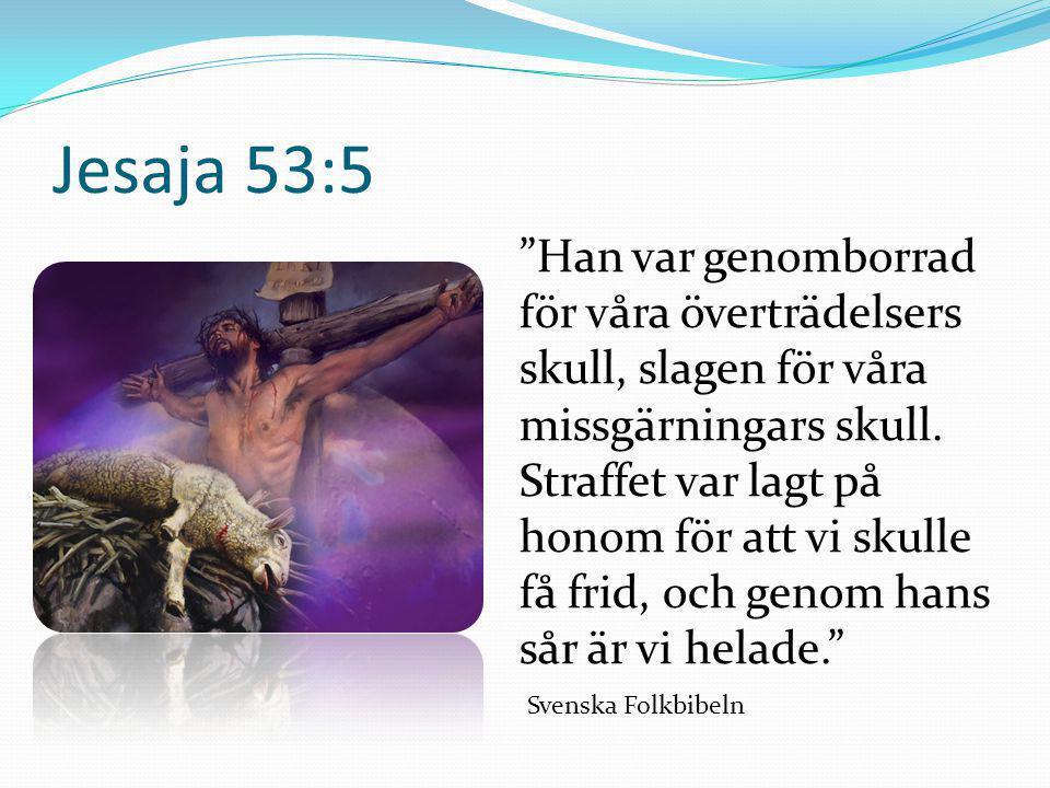 Matteusevangeliet 20:28 Så har inte heller Människosonen kommit för att bli tjänad utan för att tjäna och ge sitt liv till lösen för många. Svenska Folkbibeln