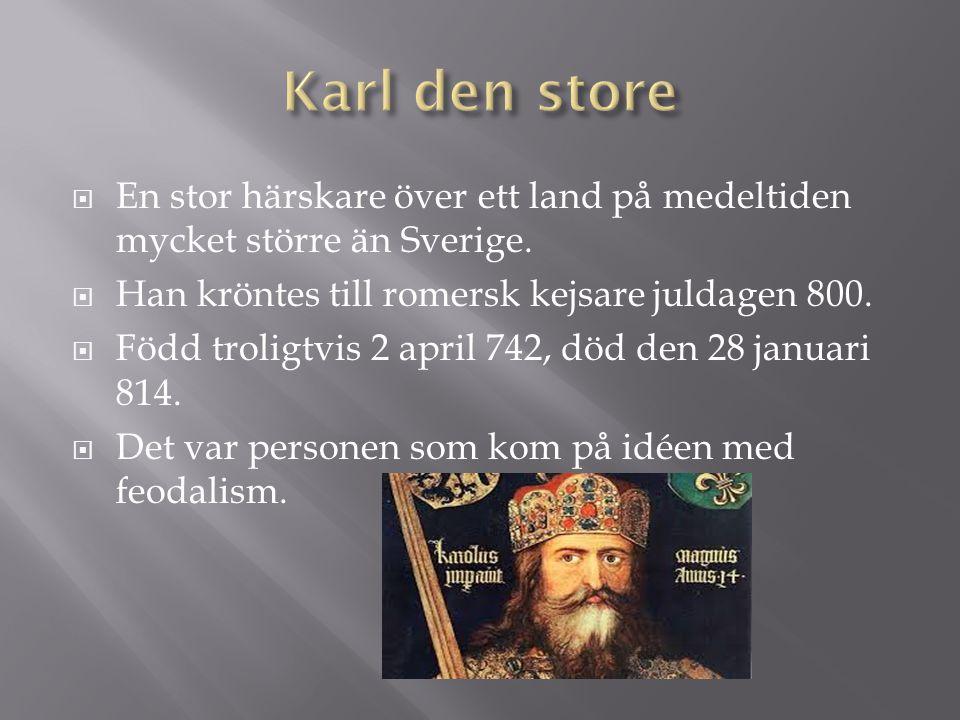  En stor härskare över ett land på medeltiden mycket större än Sverige.  Han kröntes till romersk kejsare juldagen 800.  Född troligtvis 2 april 74