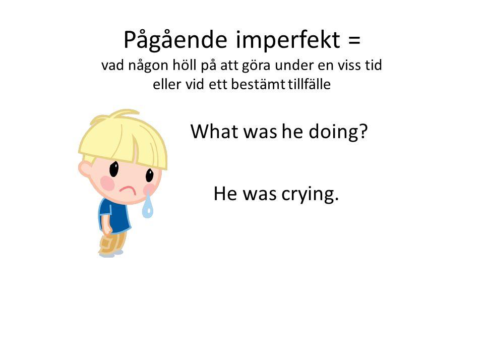 Pågående imperfekt = vad någon höll på att göra under en viss tid eller vid ett bestämt tillfälle What was he doing.