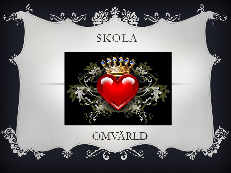 SKOLA OMVÄRLD