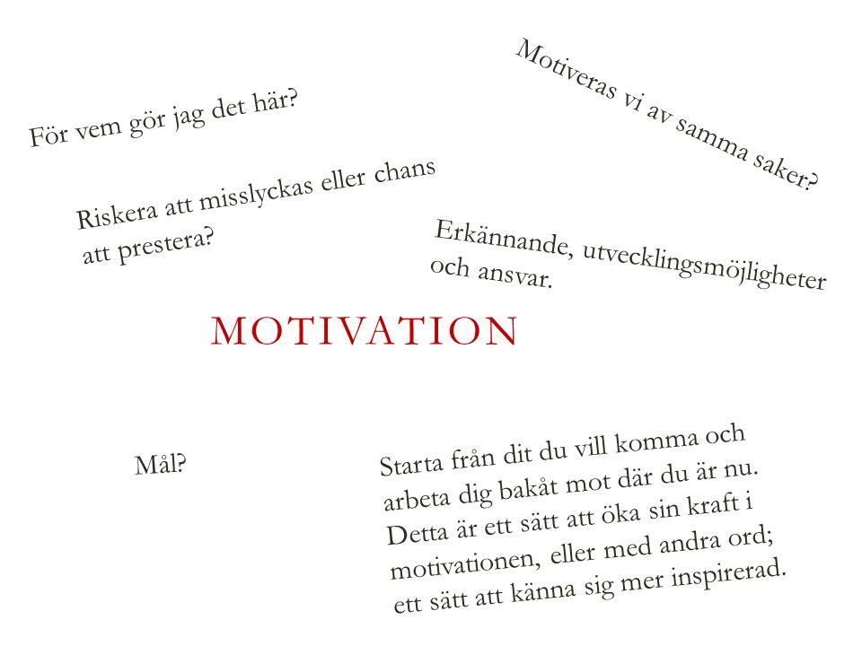 MOTIVATION För vem gör jag det här. Motiveras vi av samma saker.