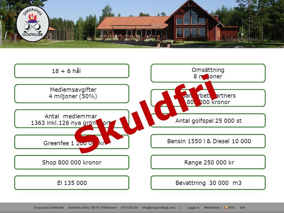 Kundprofil (GIT) Golf-ID NamnKlubb Ålder / Kön Antal spel Spelbeteende