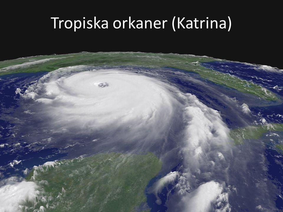 Tropiska orkaner (Katrina)