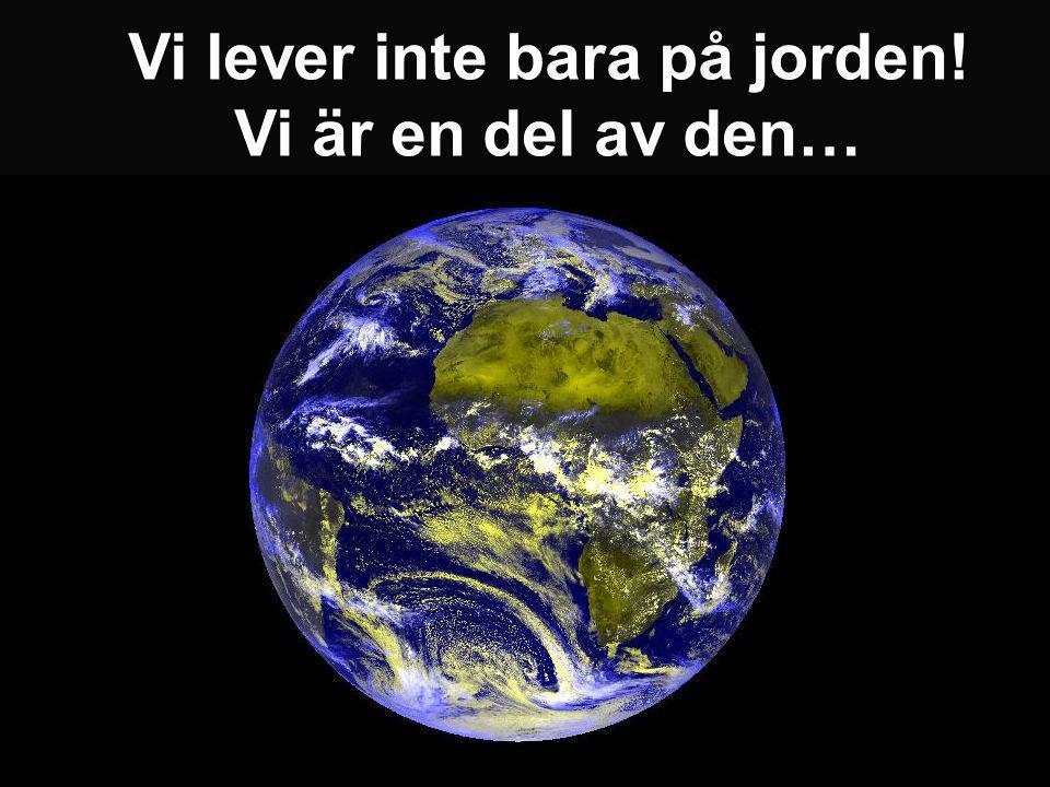 Vi lever inte bara på jorden! Vi är en del av den…
