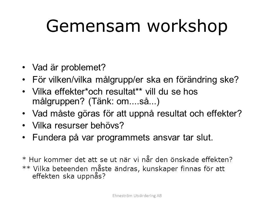 Gemensam workshop Vad är problemet? För vilken/vilka målgrupp/er ska en förändring ske? Vilka effekter*och resultat** vill du se hos målgruppen? (Tänk