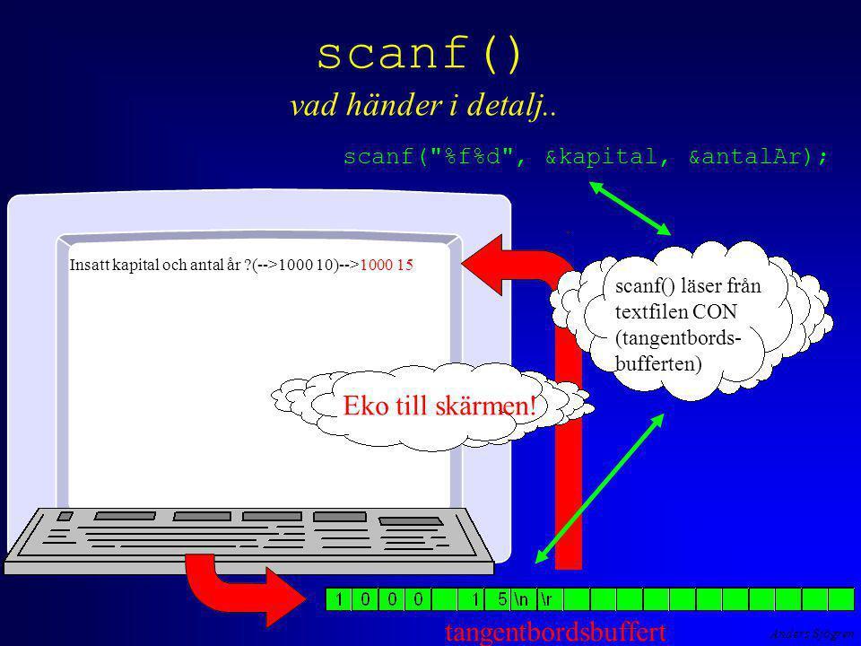 Anders Sjögren scanf() vad händer i detalj..