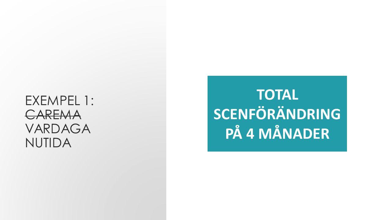 EXEMPEL 1: CAREMA VARDAGA NUTIDA TOTAL SCENFÖRÄNDRING PÅ 4 MÅNADER