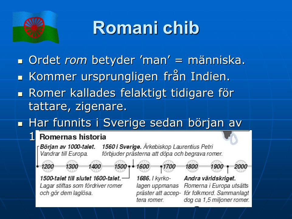 Romani chib Ordet rom betyder 'man' = människa. Ordet rom betyder 'man' = människa. Kommer ursprungligen från Indien. Kommer ursprungligen från Indien