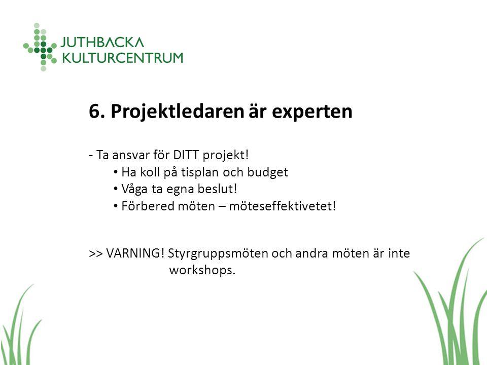 6. Projektledaren är experten - Ta ansvar för DITT projekt.
