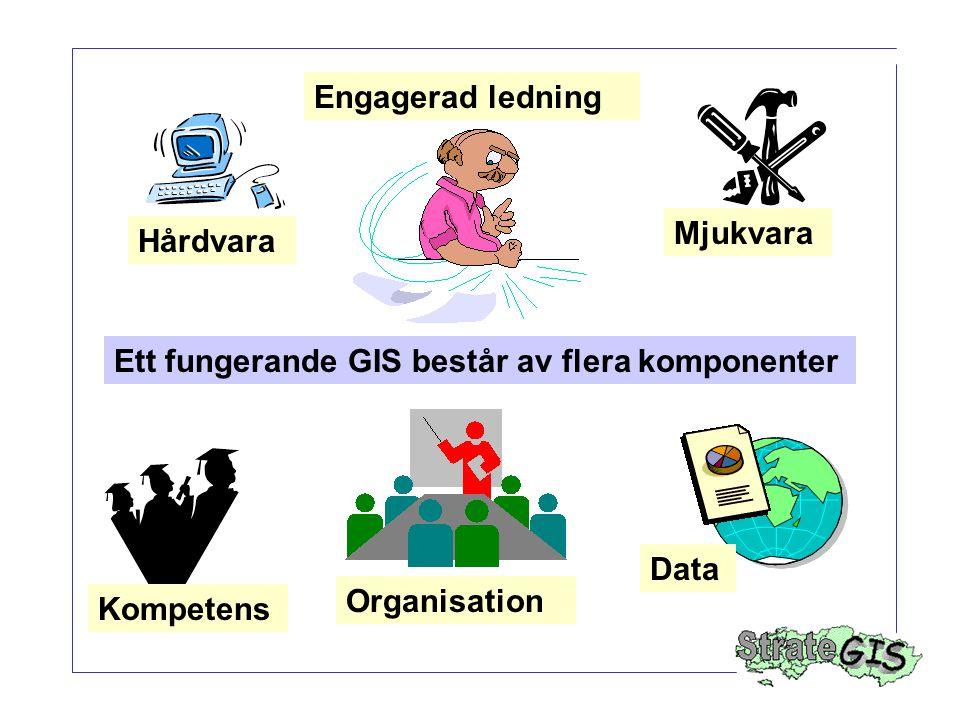 Ett fungerande GIS består av flera komponenter Hårdvara Mjukvara Engagerad ledning Kompetens Organisation Data
