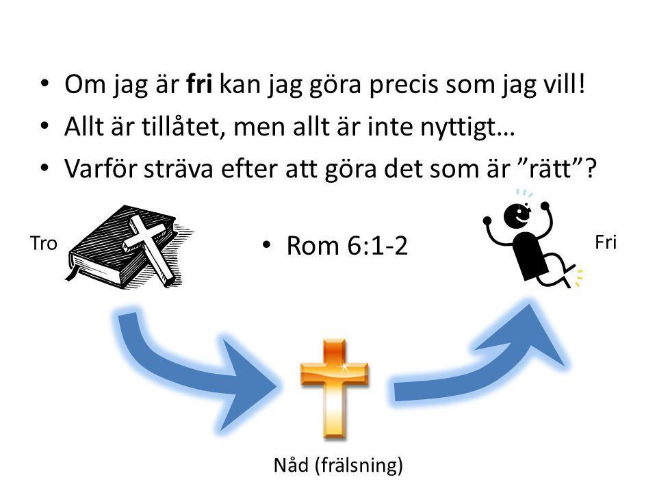 Fri Nåd (frälsning) Tro Rom 6:1-2 Varför sträva efter att göra det som är rätt .