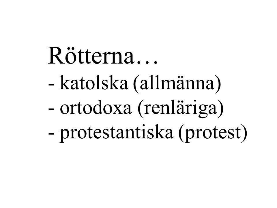 Rötterna… - katolska (allmänna) - ortodoxa (renläriga) - protestantiska (protest)