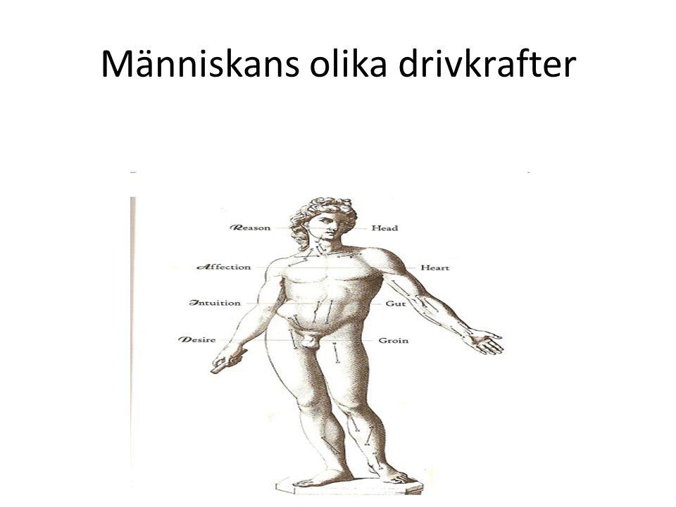 Människans olika drivkrafter