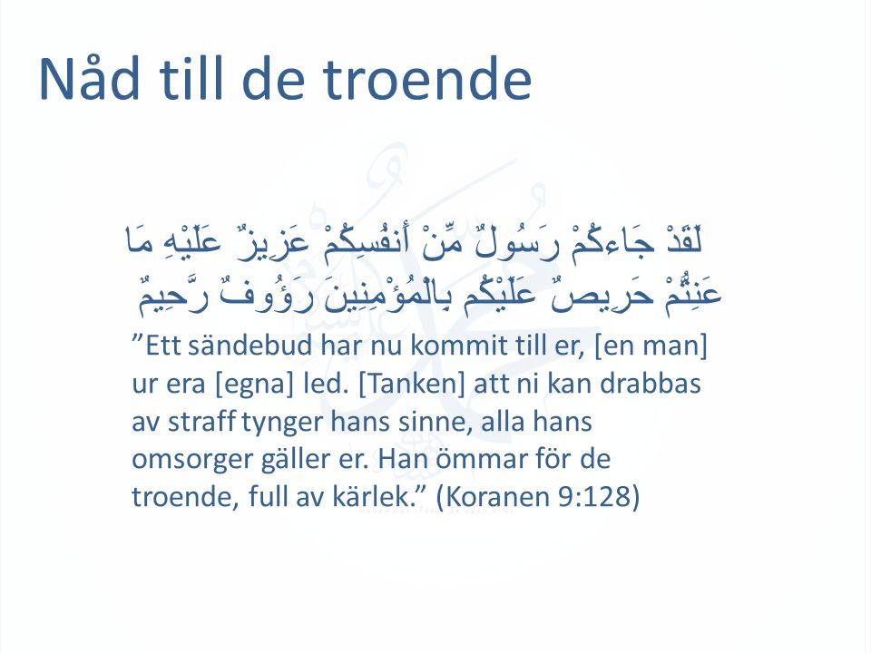 """Nåd till de troende لَقَدْ جَاءكُمْ رَسُولٌ مِّنْ أَنفُسِكُمْ عَزِيزٌ عَلَيْهِ مَا عَنِتُّمْ حَرِيصٌ عَلَيْكُم بِالْمُؤْمِنِينَ رَؤُوفٌ رَّحِيمٌ """"Ett"""