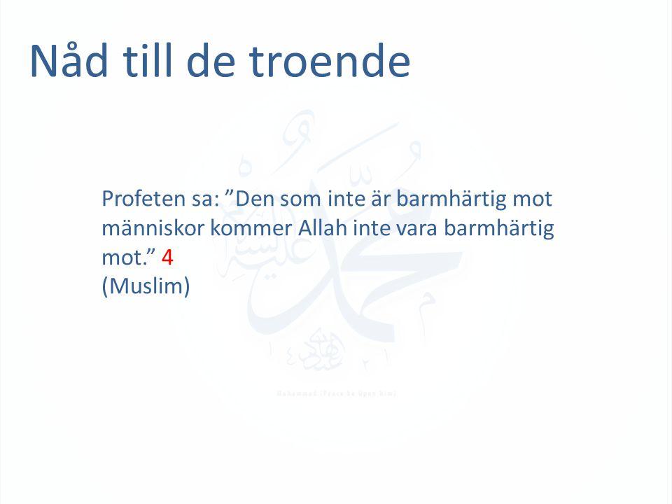 """Nåd till de troende Profeten sa: """"Den som inte är barmhärtig mot människor kommer Allah inte vara barmhärtig mot."""" 4 (Muslim)"""