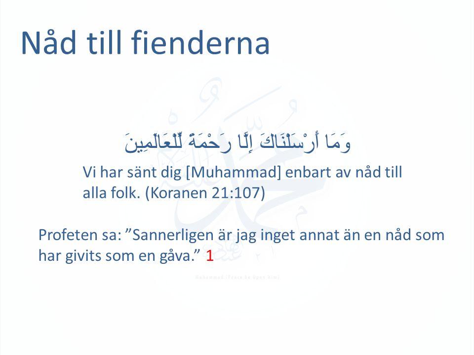 Nåd till fienderna وَمَا أَرْسَلْنَاكَ إِلَّا رَحْمَةً لِّلْعَالَمِينَ Vi har sänt dig [Muhammad] enbart av nåd till alla folk. (Koranen 21:107) Profe