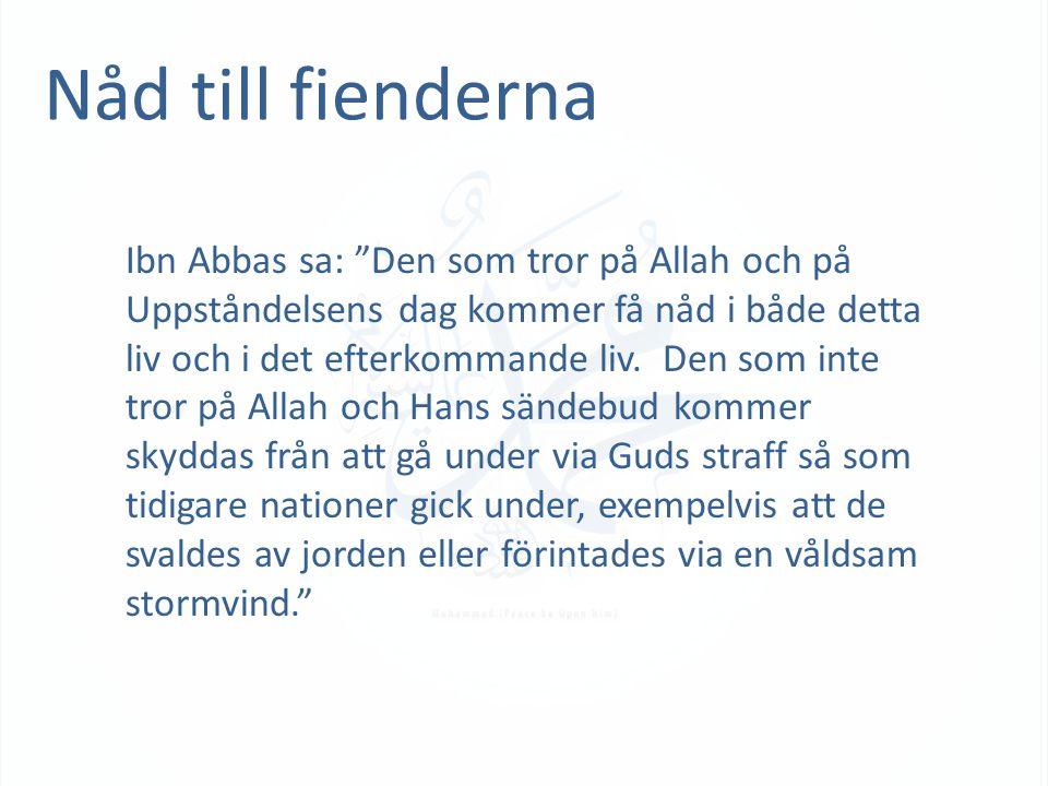 """Nåd till fienderna Ibn Abbas sa: """"Den som tror på Allah och på Uppståndelsens dag kommer få nåd i både detta liv och i det efterkommande liv. Den som"""