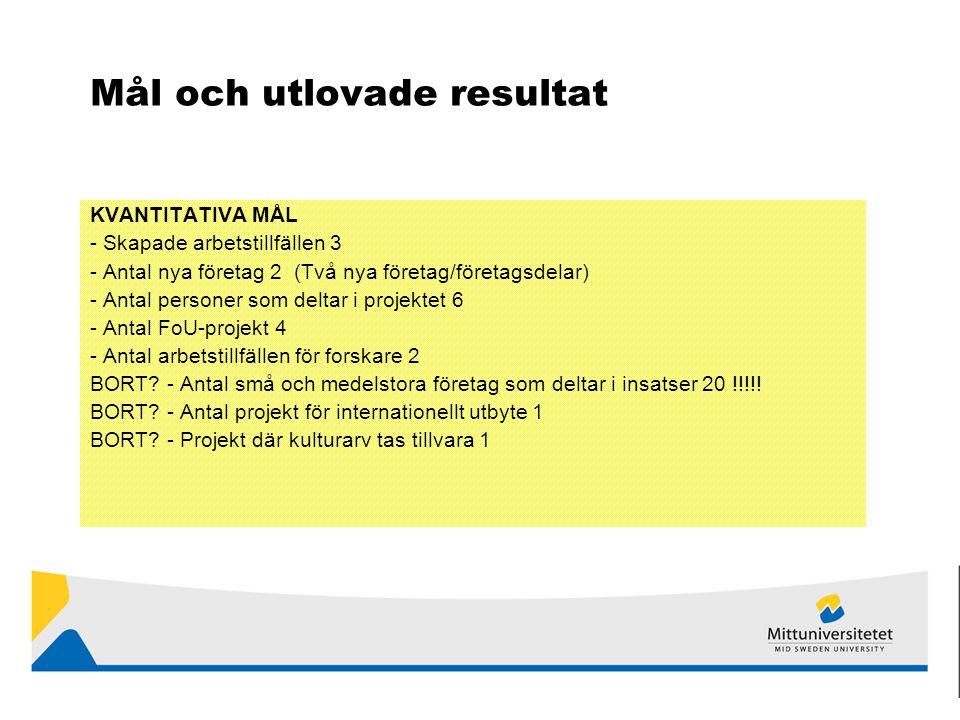 Mål och utlovade resultat KVANTITATIVA MÅL - Skapade arbetstillfällen 3 - Antal nya företag 2 (Två nya företag/företagsdelar) - Antal personer som deltar i projektet 6 - Antal FoU-projekt 4 - Antal arbetstillfällen för forskare 2 BORT.