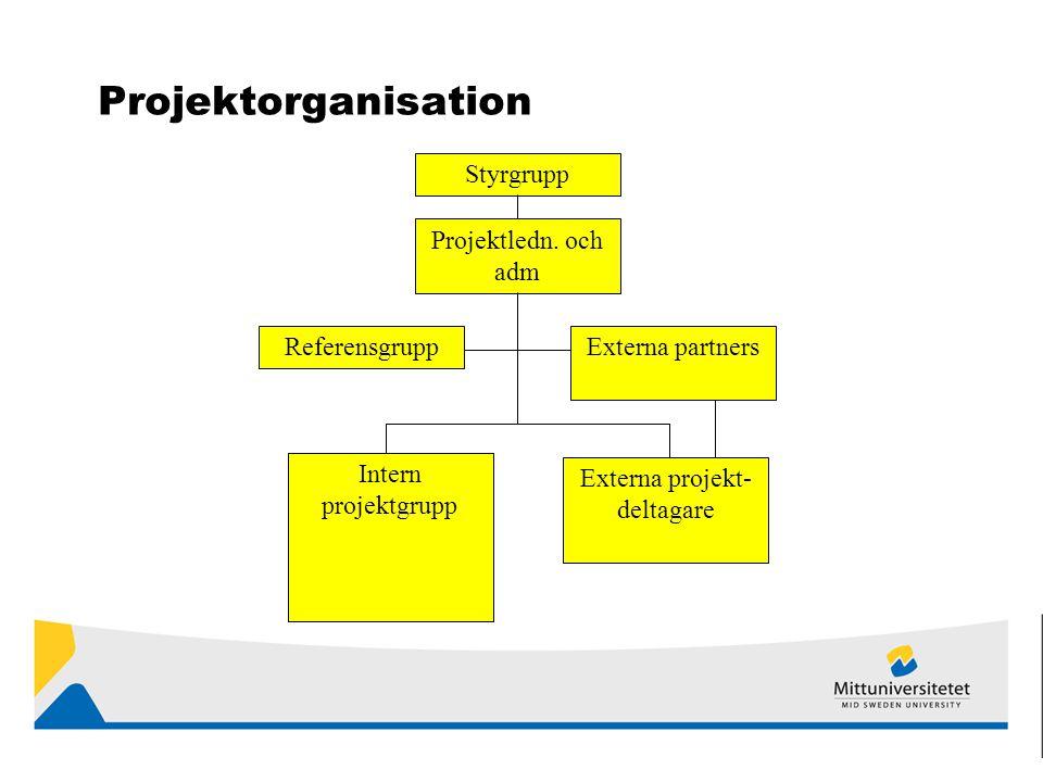Projektorganisation Styrgrupp Projektledn.