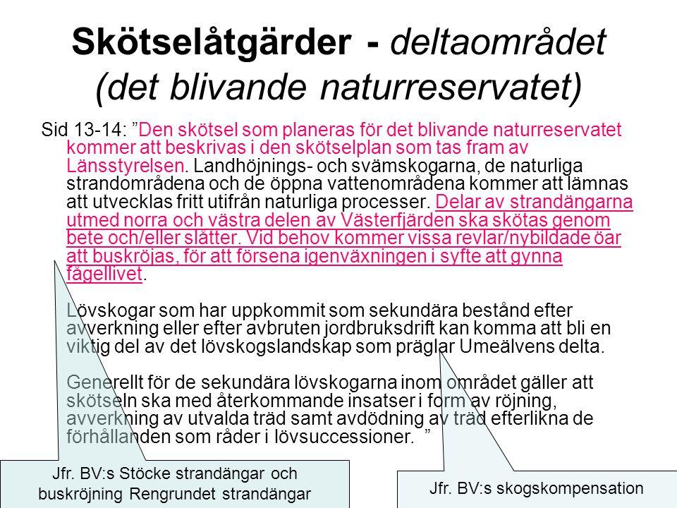 Skötselåtgärder - deltaområdet (det blivande naturreservatet) Sid 13-14: Den skötsel som planeras för det blivande naturreservatet kommer att beskrivas i den skötselplan som tas fram av Länsstyrelsen.