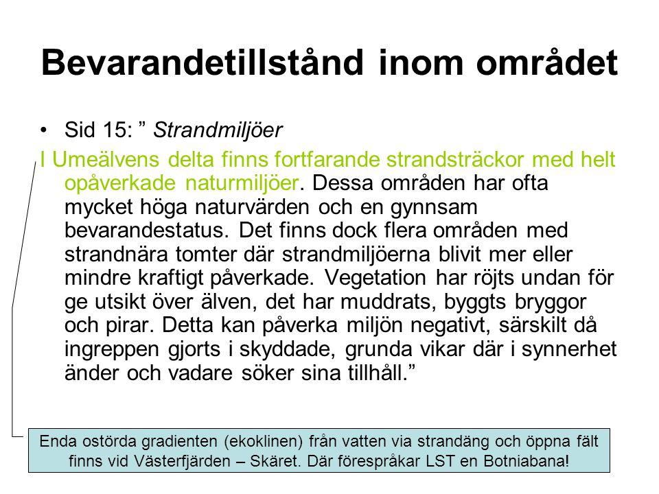 Bevarandetillstånd inom området Sid 15: Strandmiljöer I Umeälvens delta finns fortfarande strandsträckor med helt opåverkade naturmiljöer.