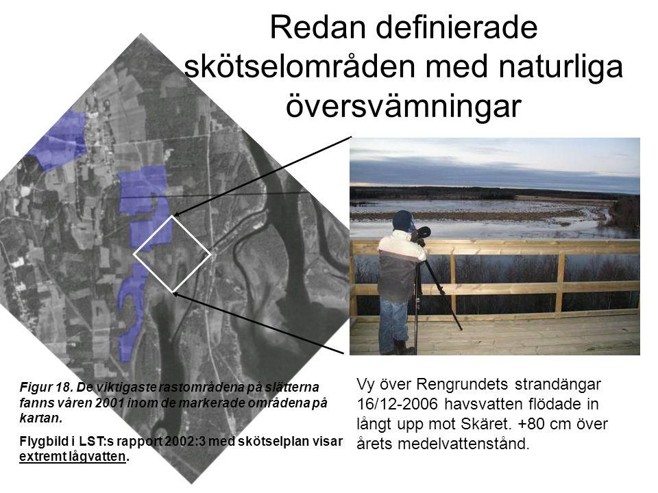 Redan definierade skötselområden med naturliga översvämningar Vy över Rengrundets strandängar 16/12-2006 havsvatten flödade in långt upp mot Skäret.