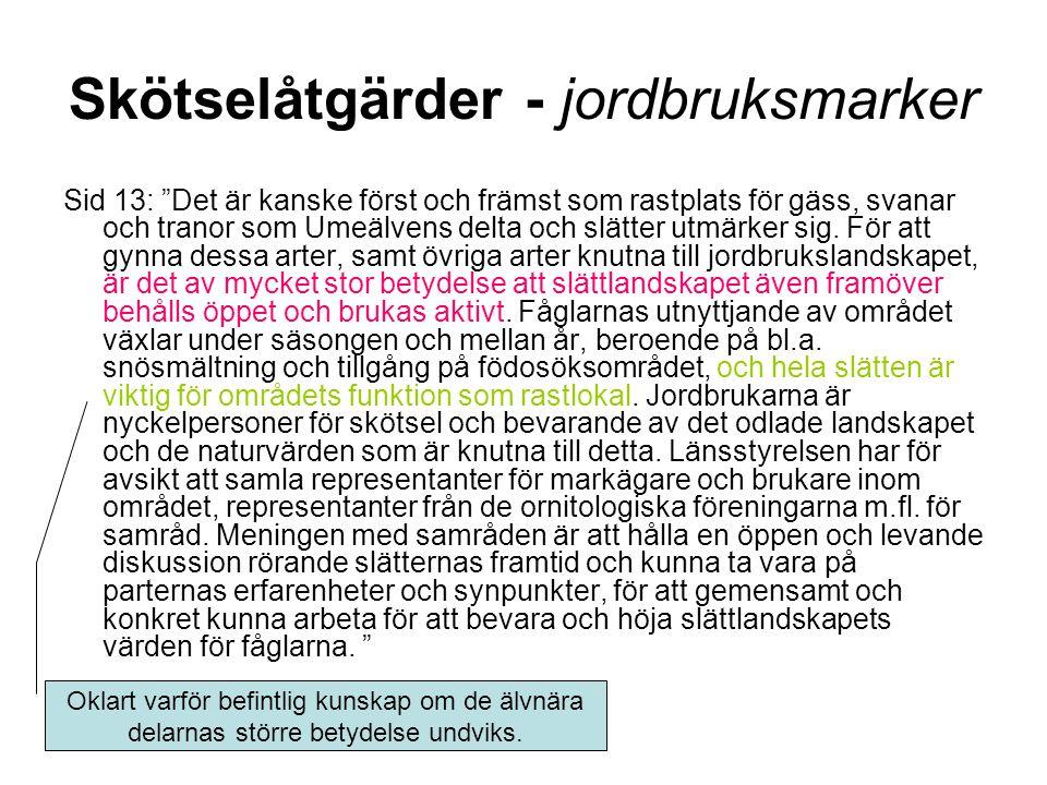 Skötselåtgärder - jordbruksmarker Sid 13: Det är kanske först och främst som rastplats för gäss, svanar och tranor som Umeälvens delta och slätter utmärker sig.