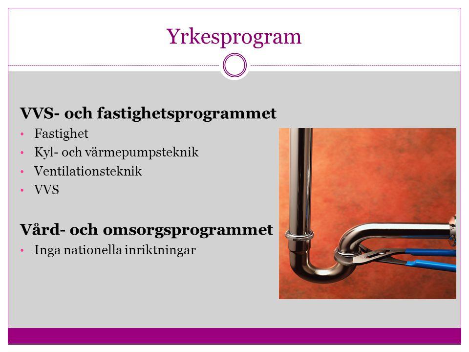 Yrkesprogram VVS- och fastighetsprogrammet Fastighet Kyl- och värmepumpsteknik Ventilationsteknik VVS Vård- och omsorgsprogrammet Inga nationella inri