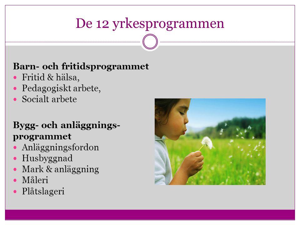 De 12 yrkesprogrammen Barn- och fritidsprogrammet Fritid & hälsa, Pedagogiskt arbete, Socialt arbete Bygg- och anläggnings- programmet Anläggningsford