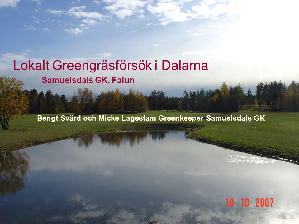 Lokalt Greengräsförsök i Dalarna Samuelsdals GK, Falun Bengt Svärd och Micke Lagestam Greenkeeper Samuelsdals GK