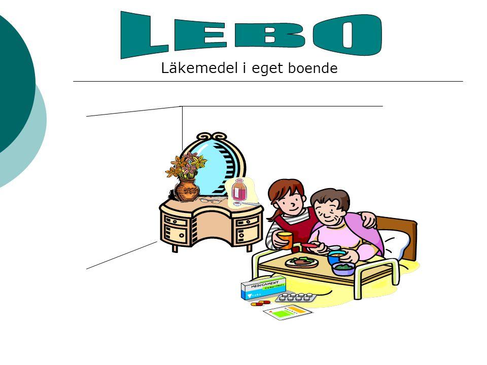 LEBO - Vad är det . Ett samverkansprojekt i Primärvården med hjälp av stimulansmedel.