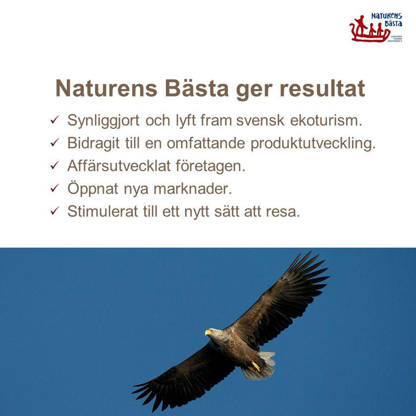 Naturens Bästa ger resultat Synliggjort och lyft fram svensk ekoturism. Bidragit till en omfattande produktutveckling. Affärsutvecklat företagen. Öppn