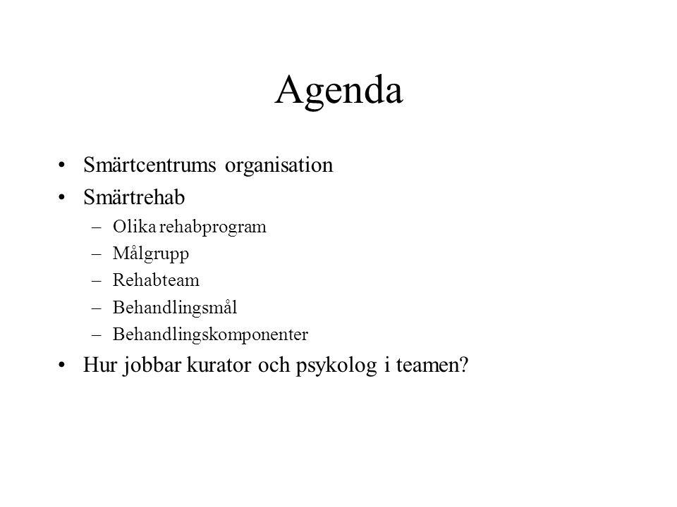 Agenda Smärtcentrums organisation Smärtrehab –Olika rehabprogram –Målgrupp –Rehabteam –Behandlingsmål –Behandlingskomponenter Hur jobbar kurator och psykolog i teamen?