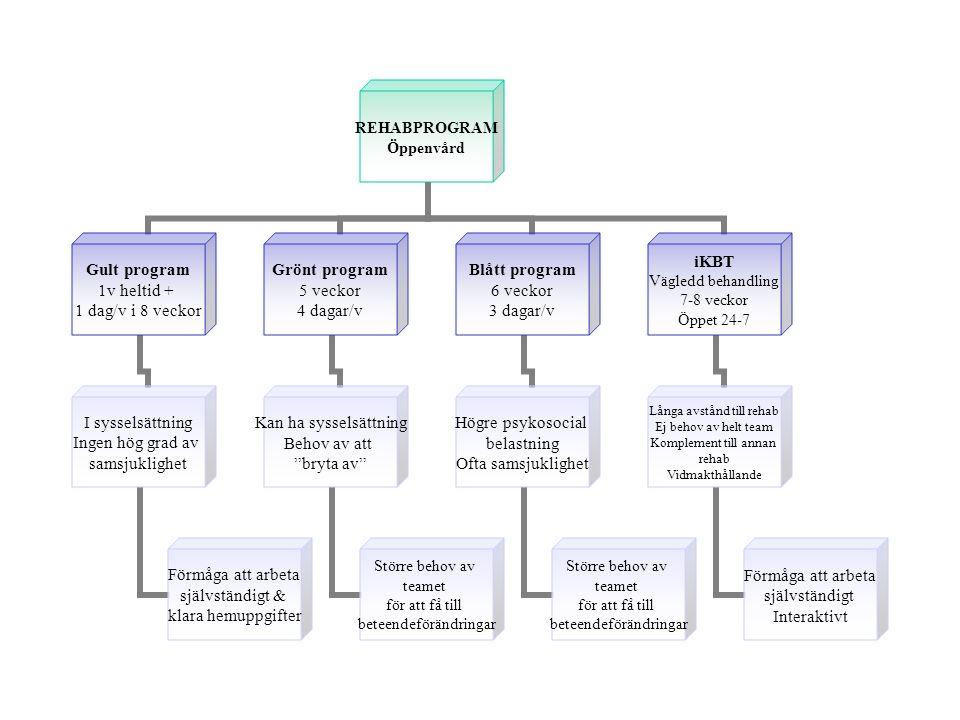 REHABPROGRAM Öppenvård Gult program 1v heltid + 1 dag/v i 8 veckor I sysselsättning Ingen hög grad av samsjuklighet Förmåga att arbeta självständigt & klara hemuppgifter Grönt program 5 veckor 4 dagar/v Kan ha sysselsättning Behov av att bryta av Större behov av teamet för att få till beteendeförändringar Blått program 6 veckor 3 dagar/v Högre psykosocial belastning Ofta samsjuklighet Större behov av teamet för att få till beteendeförändringar iKBT Vägledd behandling 7-8 veckor Öppet 24-7 Långa avstånd till rehab Ej behov av helt team Komplement till annan rehab Vidmakthållande Förmåga att arbeta självständigt Interaktivt