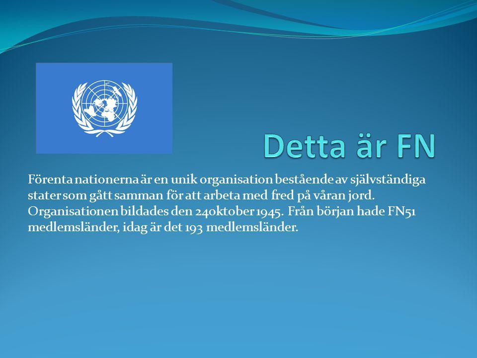 Förenta nationerna är en unik organisation bestående av självständiga stater som gått samman för att arbeta med fred på våran jord. Organisationen bil