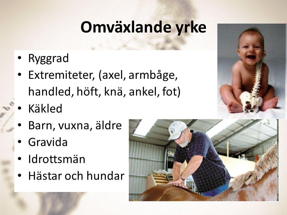 Omväxlande yrke Ryggrad Extremiteter, (axel, armbåge, handled, höft, knä, ankel, fot) Käkled Barn, vuxna, äldre Gravida Idrottsmän Hästar och hundar