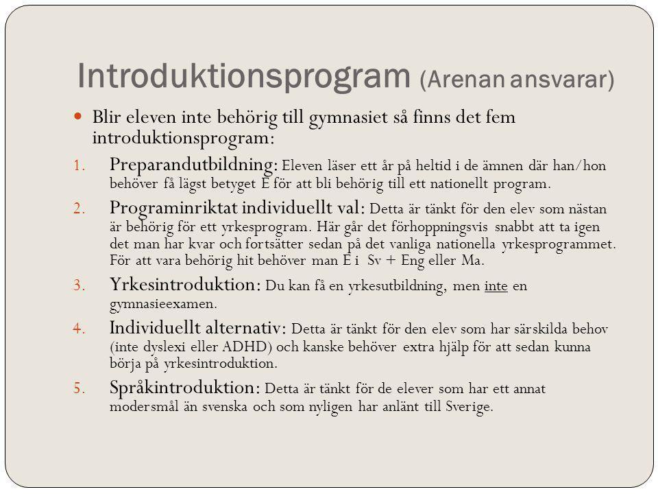 Introduktionsprogram (Arenan ansvarar) Blir eleven inte behörig till gymnasiet så finns det fem introduktionsprogram: 1. Preparandutbildning: Eleven l