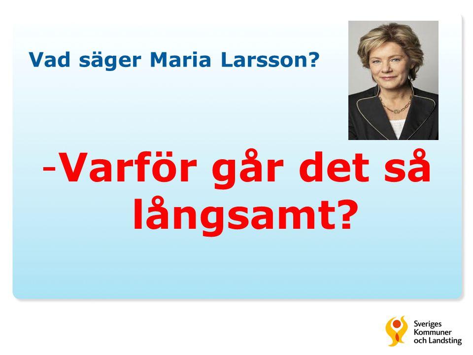 Vad säger Maria Larsson? -Varför går det så långsamt?