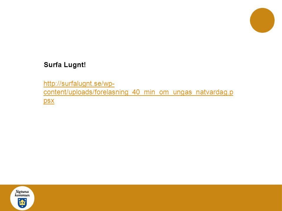 http://surfalugnt.se/wp- content/uploads/forelasning_40_min_om_ungas_natvardag.p psx Surfa Lugnt!