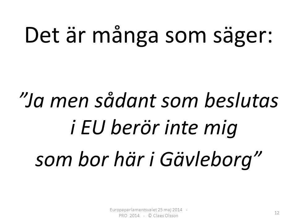 Det är många som säger: Ja men sådant som beslutas i EU berör inte mig som bor här i Gävleborg Europaparlamentsvalet 25 maj 2014 - PRO 2014 - © Claes Olsson 12
