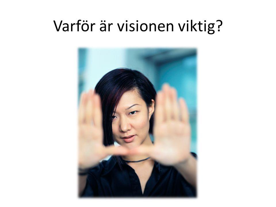 Varför är visionen viktig?
