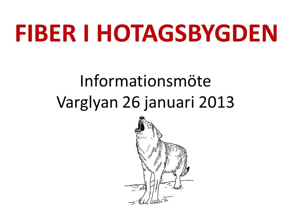 Informationsmöte Varglyan 26 januari 2013 FIBER I HOTAGSBYGDEN