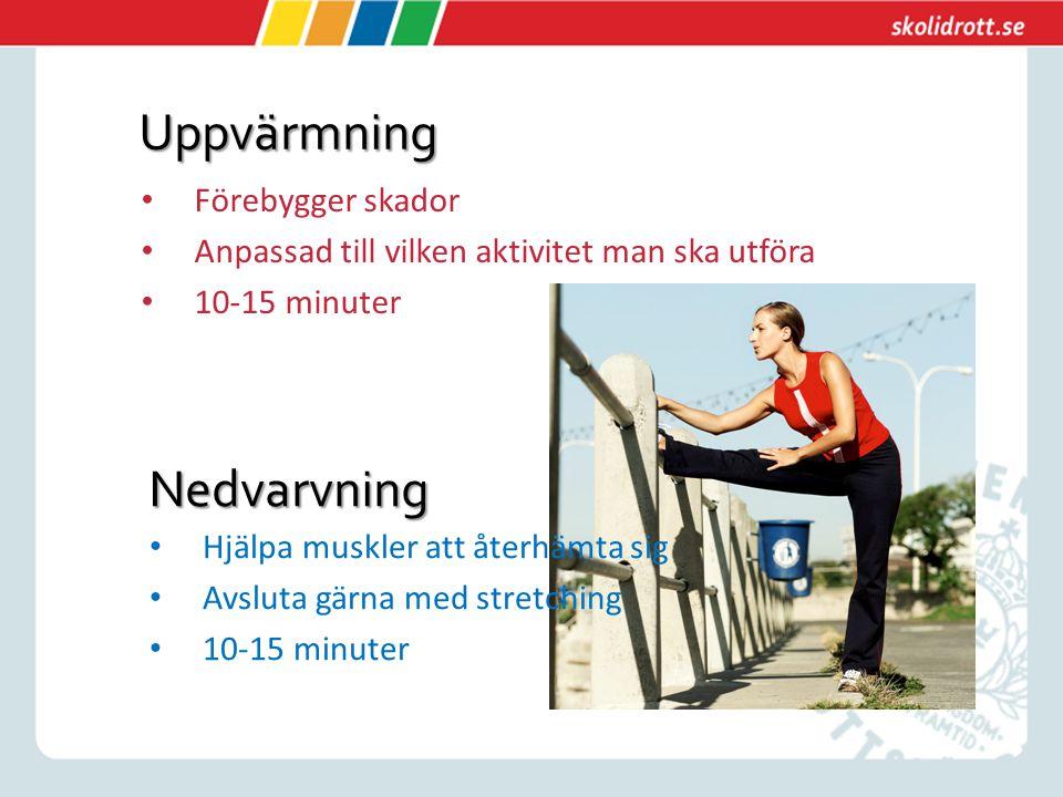Uppvärmning Förebygger skador Anpassad till vilken aktivitet man ska utföra 10-15 minuter Nedvarvning Hjälpa muskler att återhämta sig Avsluta gärna m