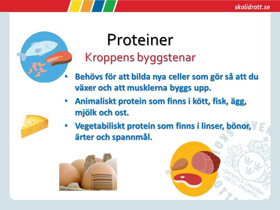 Proteiner Kroppens byggstenar Behövs för att bilda nya celler som gör så att du växer och att musklerna byggs upp. Behövs för att bilda nya celler som